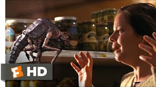 The Mist (4/9) Movie CLIP - The Birds and the Bugs (2007) HD