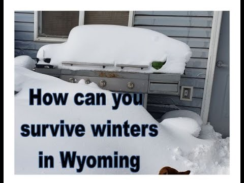 Surviving Winter In Wyoming