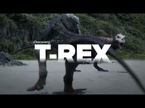 Exclusive Video of Tyrannosaurus Rex the KILLER!