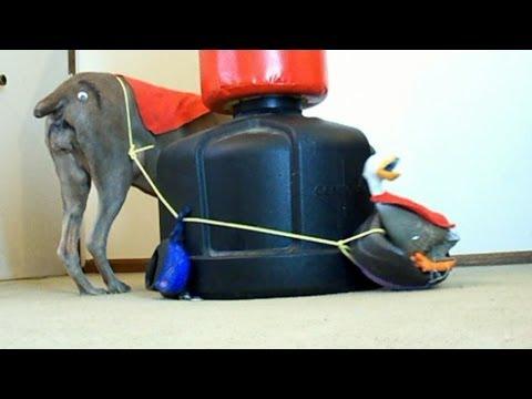 ULTIMATE DOG WALKER THE FAT FEEDER 3000