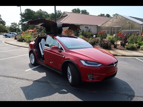 Day 43 Tesla Ruby Goes to Boot Camp