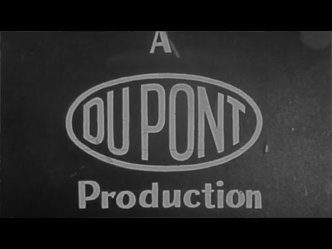 TOP 10 INCREDIBLE DUPONT FACTS