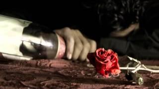 يوميات قلب بصوت (حسين تركي)