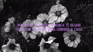 Find Me 》Sigma ft. Birdy 《Sub español》