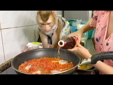 Baby Monkey | Reaction DouDou When Mom Cooking Pasta In Red Sauce