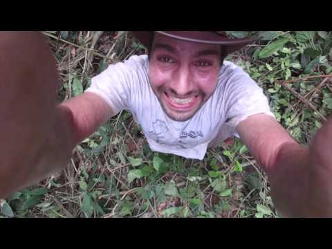 Mapping Ghana's forest and savanna ecosystems with drones