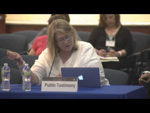 Public Comment on Day 1 (CFSAC Spring 2013)