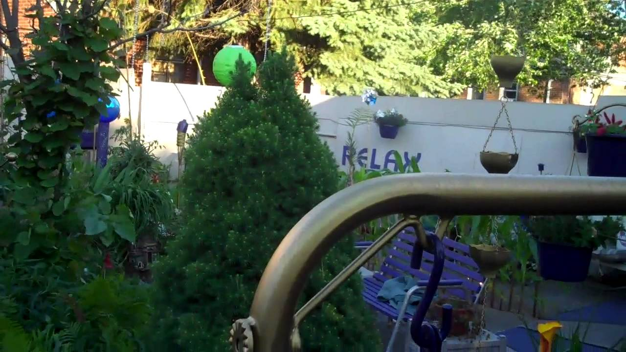 Coolest Backyard EVER - YouTube