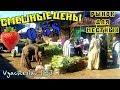 Продуктовый Рынок в Хургаде. Египет. ЖЕСТЬ!