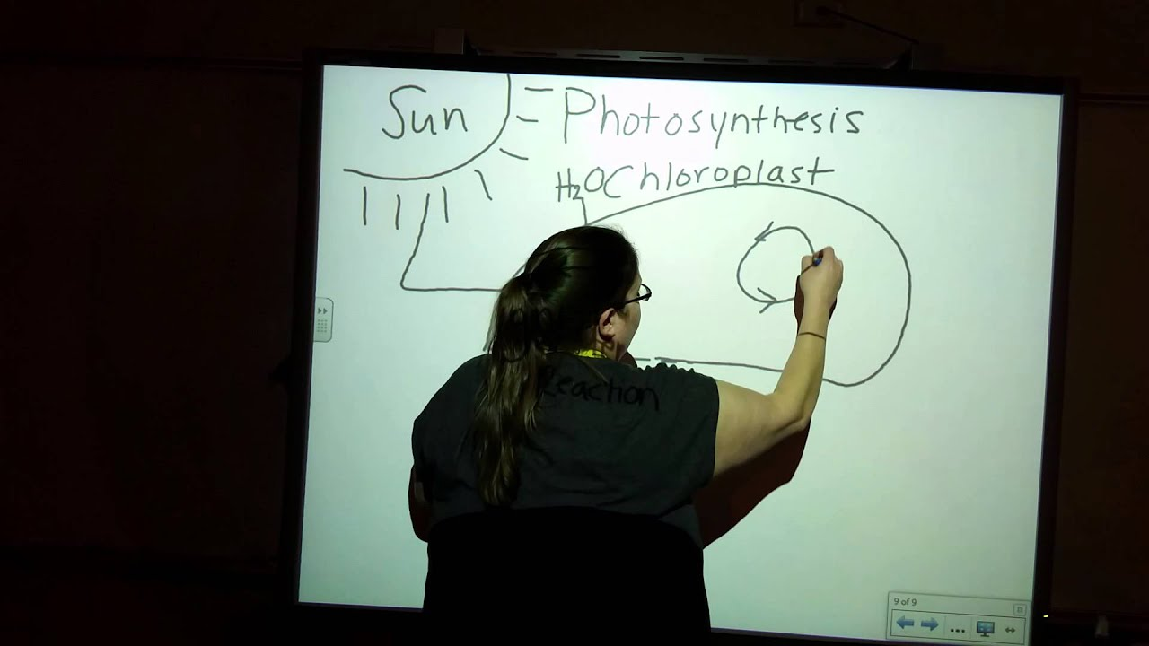 Photosynthesis diagram biology fundamentals youtube photosynthesis diagram biology fundamentals ccuart Choice Image