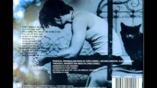 Chris Cornell - Disappearing One (Euphoria Morning)