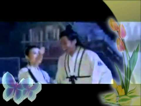 何潤東 Peter Ho - 雙飛 Flying Together - Eng/Pinyin Sub (Butterfly Lovers)