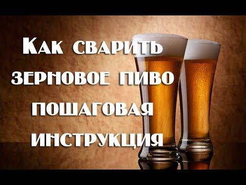 Как правильно варить пиво