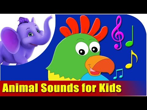 Animal Sounds for Kids! Travel Video