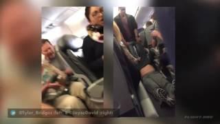 В США охранники United Airlines избили пассажира