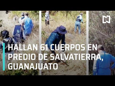 Hallan 61 cuerpos en fosas clandestinas de Salvatierra, Guanajuato - En Punto