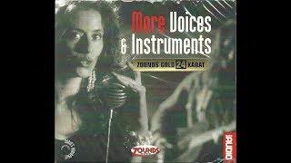 Audio's Audiophile Vol.23 - MORE Voices & Instruments (2005)