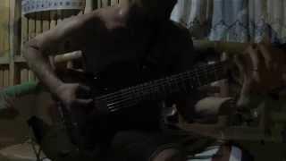 Dismember  - Casket Garden (Guitar Cover)