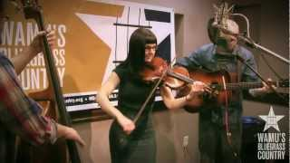 April Verch Band - Tennessee Wagoner [Live at WAMU
