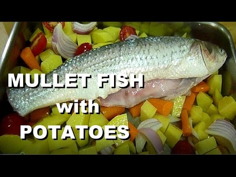 Italian food fish recipes mullet fish baked mullet easy for Mullet fish recipe