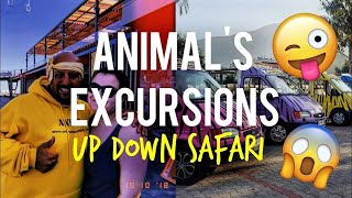 Animal's Excursions: Up Down Safari