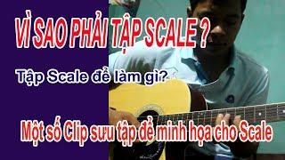 Tự Học Đàn Guitar - Tầm quan trọng của việc tập Scales
