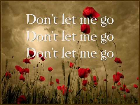 The Fray-Never Say Never (Lyrics)