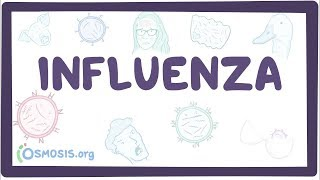 Influenza - Causes, Symptoms, Diagnosis, Treatment, Pathology