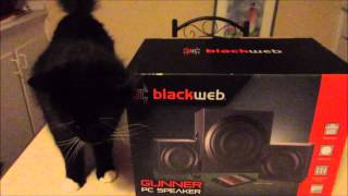 Blackweb PC Speaker Review