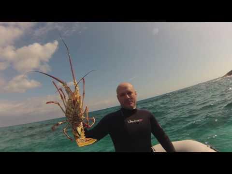 Sailing Luna Sea George Town Bahamas