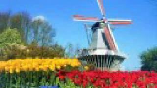 Herman Emmink - Tulpen uit Amsterdam (origineel)