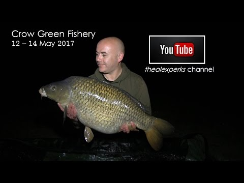 60hr session at Crow Green Fishery, Essex - May 2017