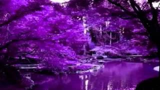 Purple/Violet Healing Energy Meditation