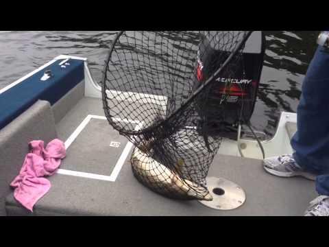 Fishing On Lower Saranac Lake