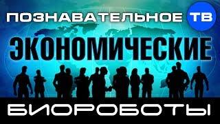Экономические биороботы (Познавательное ТВ, Валентин Катасонов)