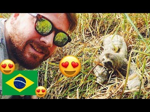 5 REASONS TO LOVE BRAZIL
