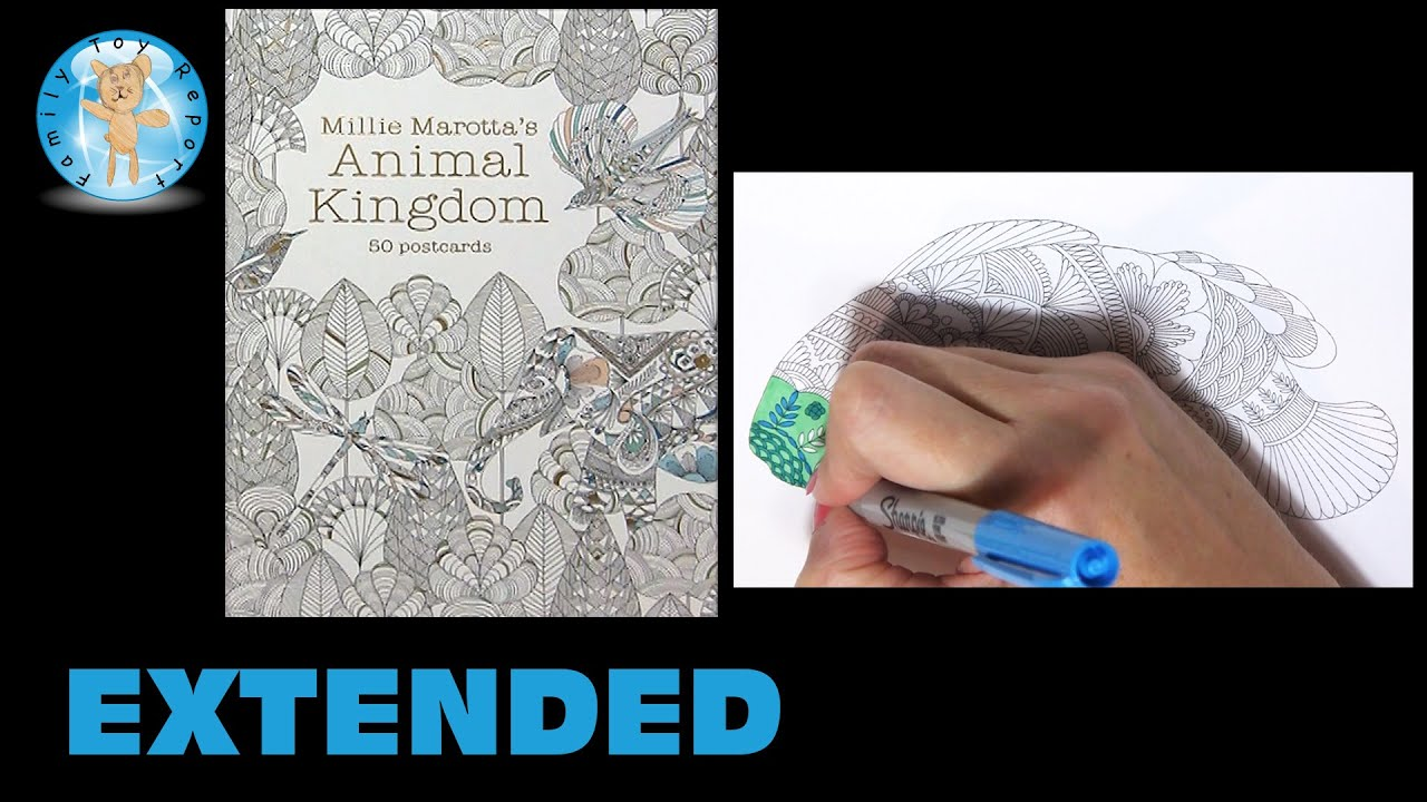 Millie Marottas Animal Kingdom Postcards Adult Coloring Book Fish Extended