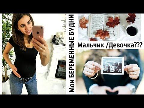 Мои БЕРЕМЕННЫЕ БУДНИ | Мальчик или Девочка???? Новый IPhone 11, заказ Sunlight