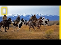 Chase a Wild Buffalo Stampede With These Heroic Cowboys | Short Film Showcase