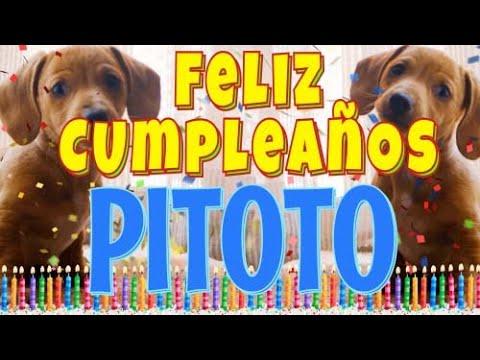 Download ¡Feliz Cumpleaños Pitoto! (Perros hablando gracioso) ¡Muchas Felicidades Pitoto!