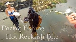 2019 Poke Pole Fishing for Eels and Rockfish in Morro Bay | Catch and Cook Rockfish Soup!