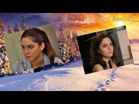 Любовь Попова    -    Роза на снегу