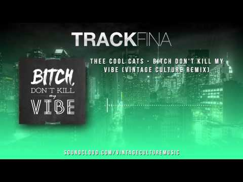 Thee Cool Cats - Bitch Don't Kill My Vibe (Vintage Culture Remix)