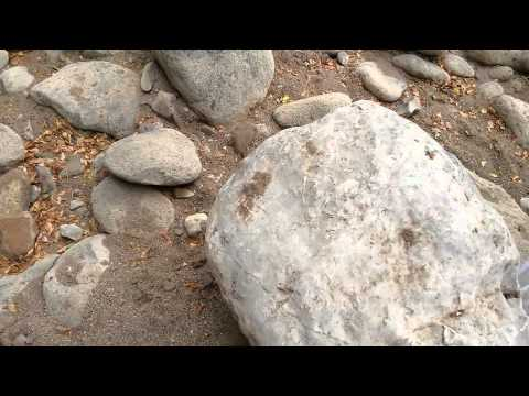 "Donde Buscar Oro ""Sluice Box Natural"" Gold Rush Mexico Mexican Prospector"