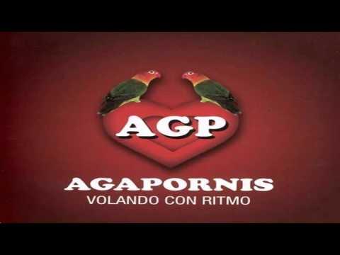 """Cd agapornis """"Volando con Ritmo"""" (Link de Descarga)"""