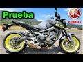 Yamaha FZ-09 / MT-09 EDICIÓN ESPECIAL  Y  FULL SYSTEM TWO BROTHERS Review en Español ??