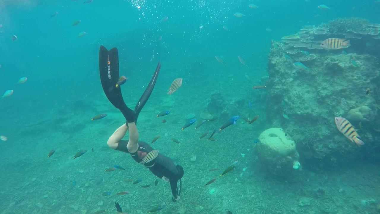 馬來西亞 熱浪島自由潛水~魚很多喔 - YouTube