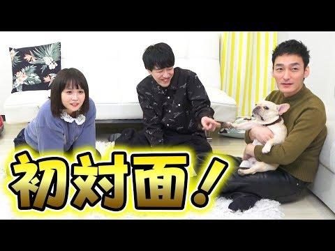 クルチューバーとパオパオチャンネルが念願の初対面!!犬好き同士で盛り上がります!!