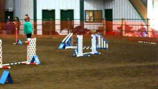 Gem City Dog Agility - Exc A Jww 2/27/11