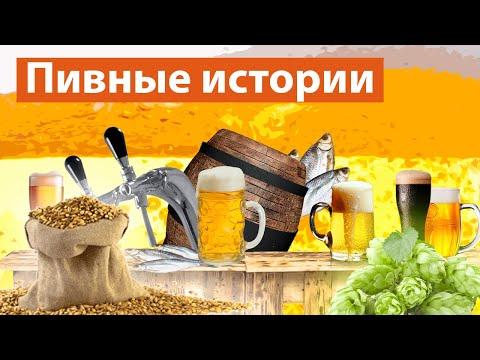 18+ Лучшее видео под пиво о Москве: про пивные, производство и традиции